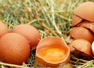 slomljena jaja
