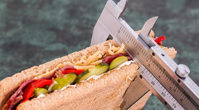 brza dijeta ishrana mrsavljenje